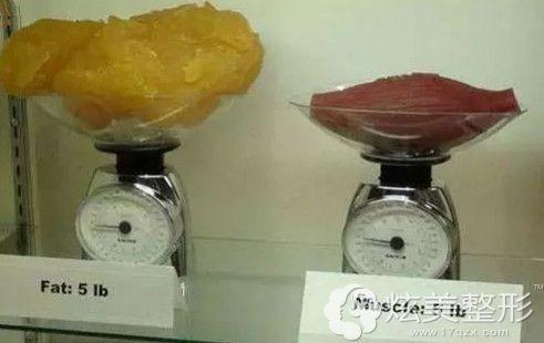 脂肪和肌肉密度不同