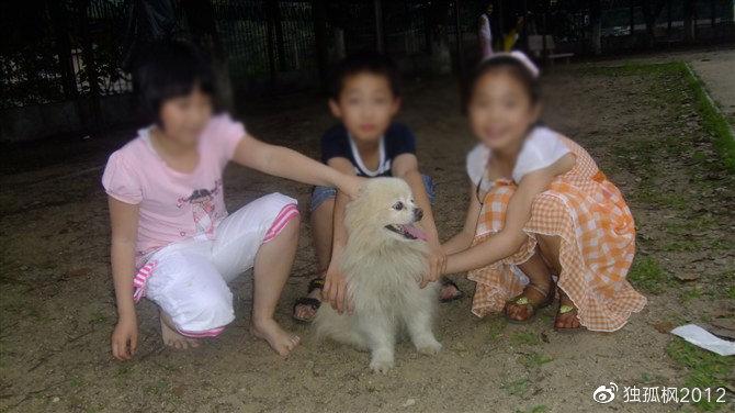 2010年6月6号拍摄于学校操场沙地,小朋友围着它。