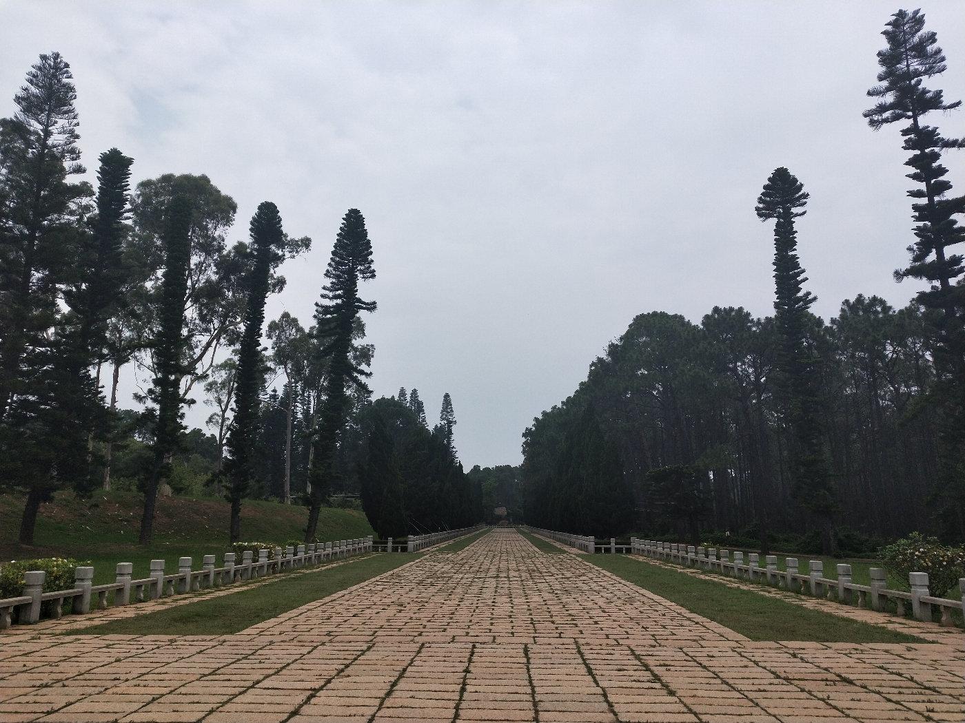 纪念馆后面的道路两旁都有高大的树,路面真的很干净