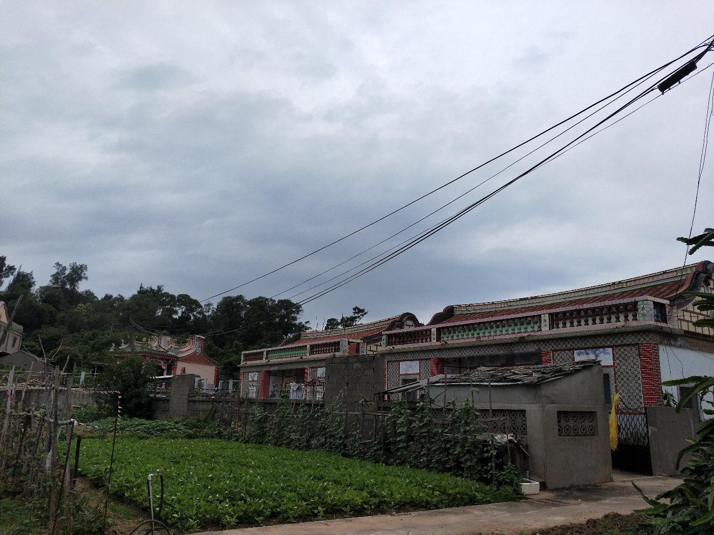 每天住在这样美美的房子里,在门前的菜地上种几样家人爱吃的蔬菜,神仙生活