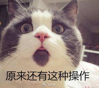 图片来源:搜狐网