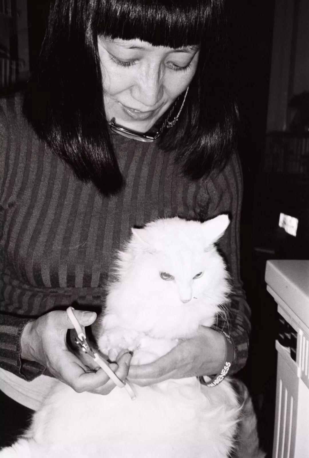 王老师给猫咪掌中宝剪指甲